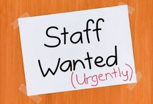 head chef required